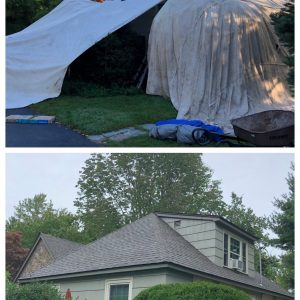 Before and After Roof